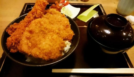 「新潟カツ丼タレカツ」神保町本店は昼も夜もリーズナブルに一人ご飯が可能